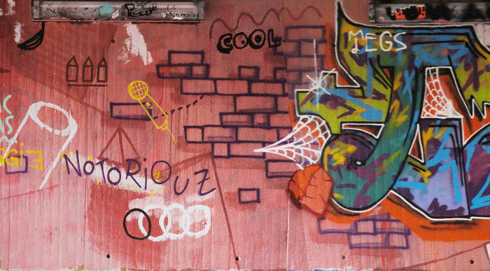 The Erol Guys - Graffiti-styles